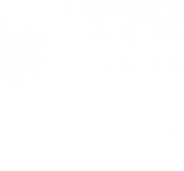 DEAR SPIELE Inc.